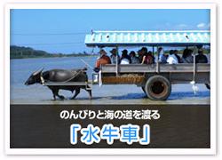 「水牛車」