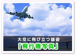「飛行機写真」