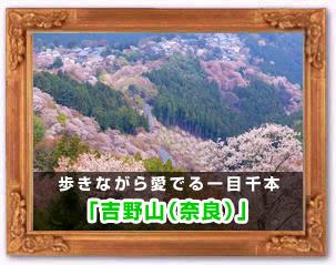 「吉野山(奈良)」
