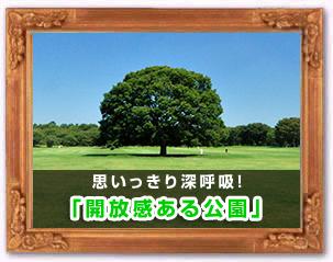 「開放感ある公園」
