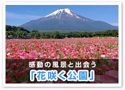 「花咲く公園」